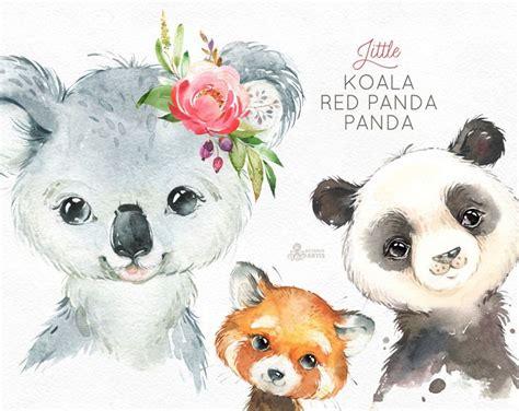 koala red panda panda watercolor animals clipart