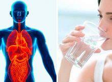 healthyholics tipps und tricks f 195 188 r ein gesundes leben