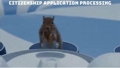 Citizenship Charlie Chocolate Australian Scene Test Squirrel