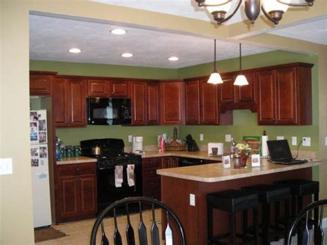 green kitchen cabinets with black appliances 1000 images about kitchen cabinets on home