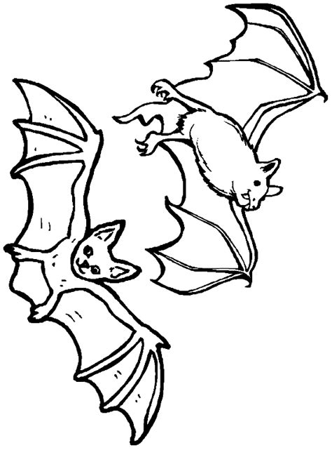 nocturnal animals coloring pages bats flying