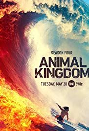 animal kingdom season  dvd release date redbox netflix