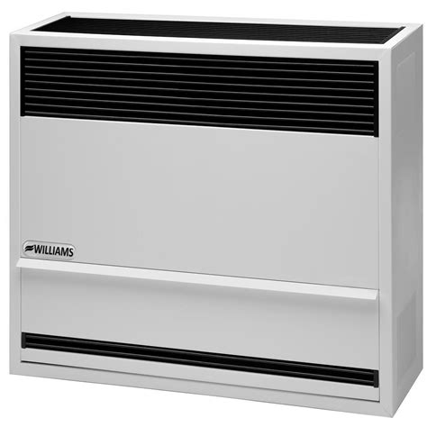 how to light a wall heater williams 22 000 btu hr direct vent furnace lp gas with