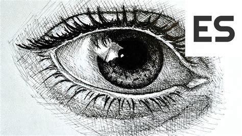 draw  realistic eye    ink youtube