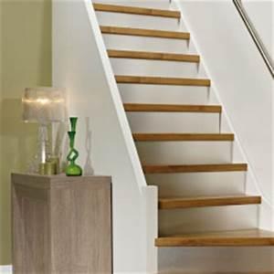 Tapis Escalier Saint Maclou : la r novation d 39 escalier saint maclou saint maclou ~ Nature-et-papiers.com Idées de Décoration