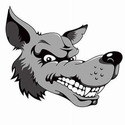 Wolf Cartoon Head