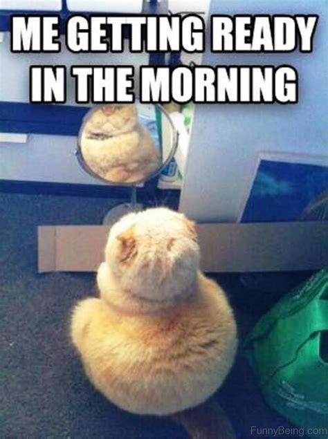 Morning Memes For 70 Funniest Morning Memes