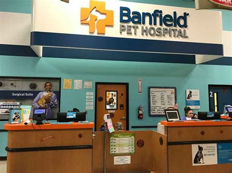 Banfield Pet Hospital® Location At 15618 Animal Art Listening Answers Market San Francisco Australian X Ray In Kuta Line Photography Ark Vets London Nails Eye Wall Sticker