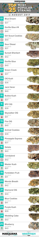 25 Most Popular Marijuana Strains in August   Marijuana