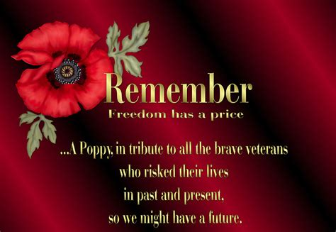 poppy poems for remembrance day memorial day poppy poem newhairstylesformen2014 com