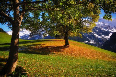 วอลเปเปอร์ : แสงแดด, แนวนอน, ตก, ภูเขา, เนินเขา, ธรรมชาติ ...