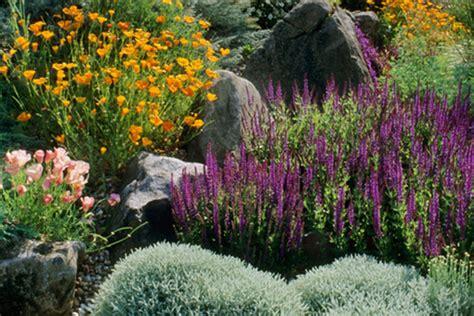 nasas climate kids plant  butterfly garden
