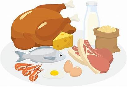 Protein Clipart Vector Diet Illustration Clip Meat