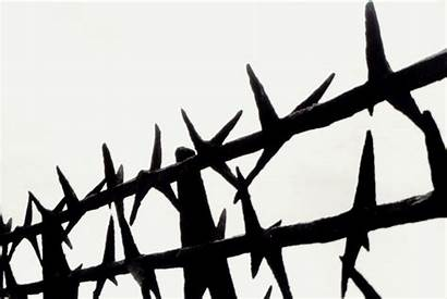 Wire Barbed Concentration Camp Clipart Mauthausen Fence
