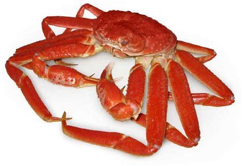 Découvrez le crabe des neiges par le Chef du restaurant Tandem