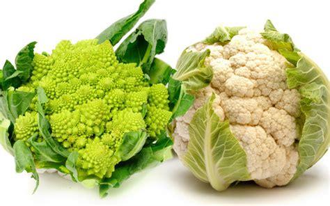 come si cucina il cavolfiore romanesco broccolo o cavolfiore piattoforte