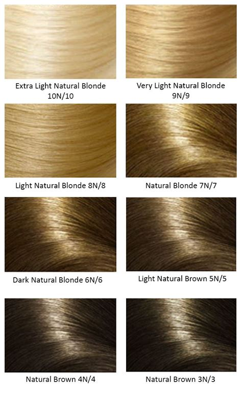 Base Hair Colors Hair And Color In 2019 Clairol Hair