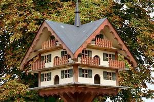 Großes Vogelhaus Selber Bauen : vogelhaus selber bauen eigenschaften funktion form ~ Orissabook.com Haus und Dekorationen