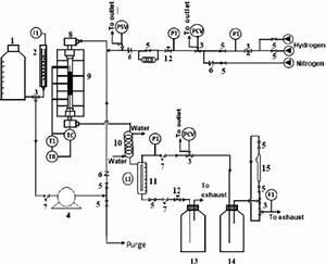 Schematic Diagram Of The Reactor Design   Pi  Pressure