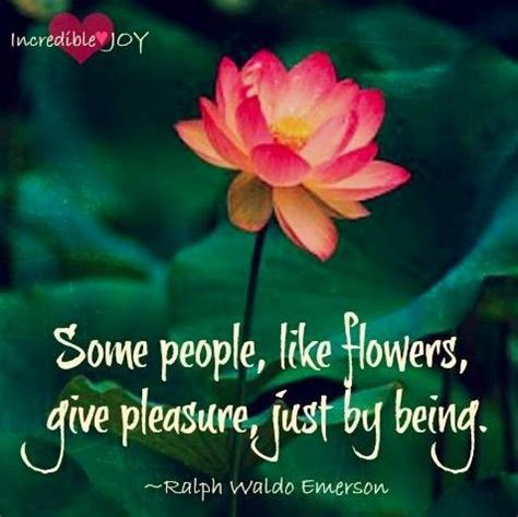 Best 25+ Flower Bloom Quotes Ideas On Pinterest. Jfk Tattoo Quotes. Tattoo Quotes For Your Child. Funny Quotes Dreams. Bible Quotes Mistakes. Inspirational Quotes Funny Quotes. Mothers Day Quotes Rip. Best Friend Quotes Gifts. Inspirational Quotes Workplace