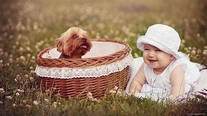 Background Pc Happy Puppy