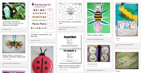 ladybugs activities printables lessons amp teaching ideas 423 | insects pins