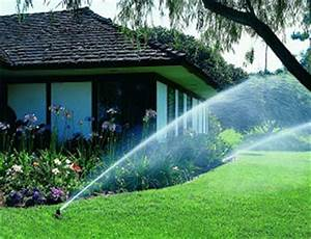 Pflanzen Automatisch Bewässern : bew sserung automatisch unterirdische automatische garten bew sserung ~ Frokenaadalensverden.com Haus und Dekorationen