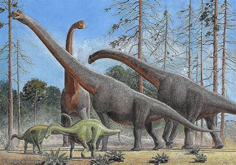 Brachiosaurus, The Giraffe-like Dinosaur