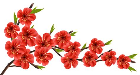 Red Flower Clipart Transparent Free collection | Download ...
