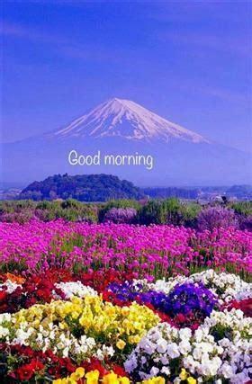 guten morgen bilder landschaft gb bilder gb pics