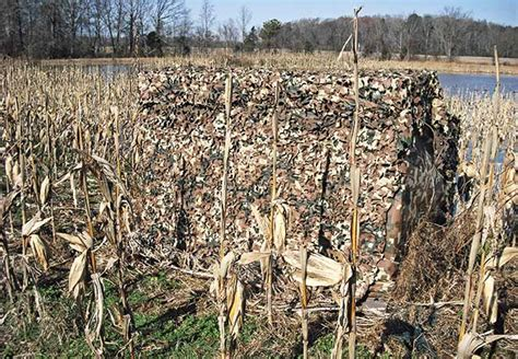 duck blind camo ducks on tap building the ultimate seat for your duck