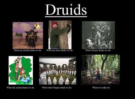 Pagan Memes - the truth comes out fid na an dru 225 d pinterest