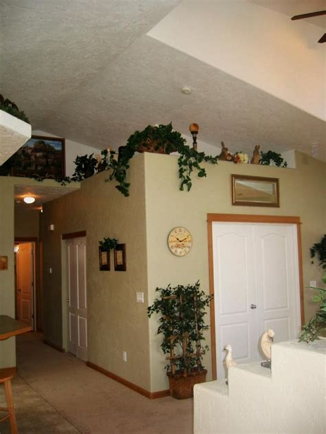 Decorating Ideas For by Shows Vaulted Ceilings In Living Area With Plant Shelves