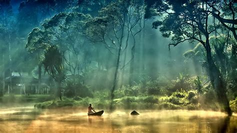 trees forest boats lakes foggy wallpaper allwallpaperin