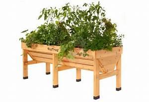 Mini Potager En Bois : potager en bois sur pieds double veg trug 180 cm jardin ~ Premium-room.com Idées de Décoration