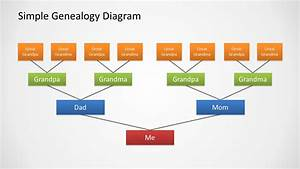 Genealogy Tree Diagram For Powerpoint