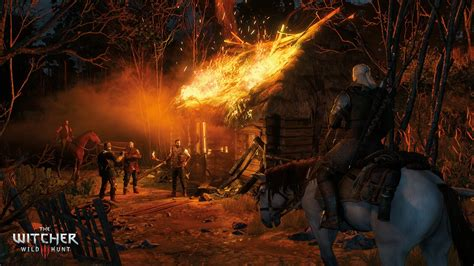 witcher  wild hunt game   year edition