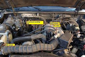 1999 Ford Ranger 4 0 Engine Wire Diagram
