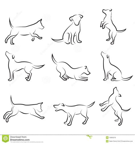 dog drawing set stock vector image  beauty animal