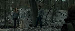 Harry Potter And The Deathly Hallows Part 1 (BluRay ...