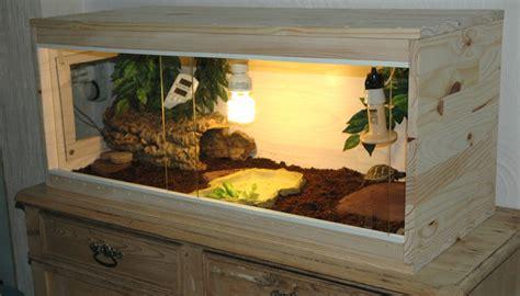 terrarium tortue testudo hermanni boettgeri piwiblackpearl