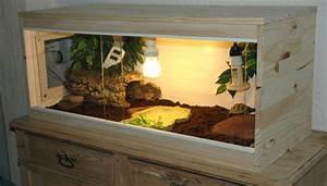 Acheter Terrarium Plante : terrarium tortue testudo hermanni boettgeri piwiblackpearl ~ Teatrodelosmanantiales.com Idées de Décoration