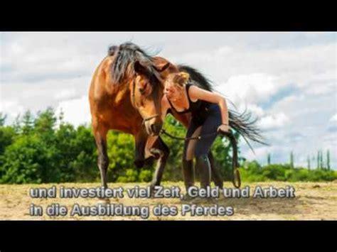 pferde op versicherung xxl bei kolik