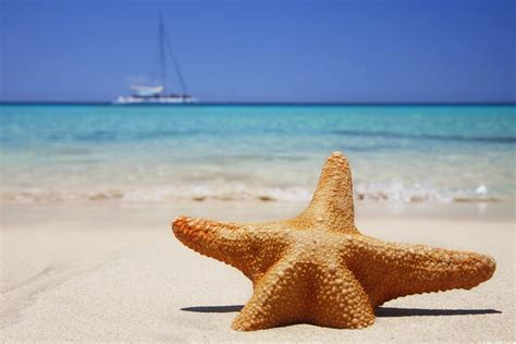 sun sea sand essentials tips for hair