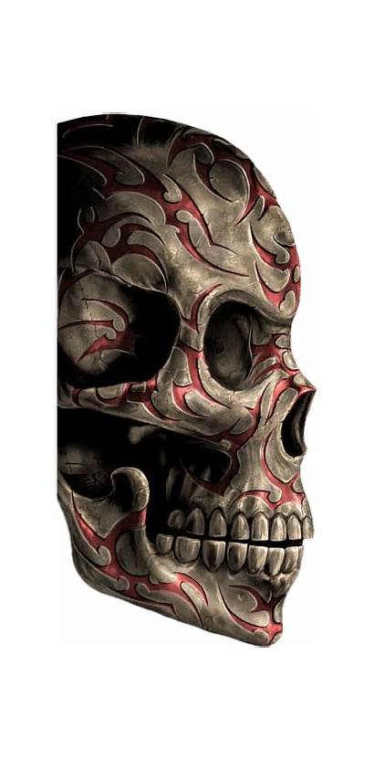Skull Sugar Tattoos Human Skulls Tattoo Transparent