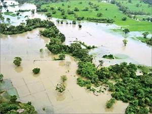 Sri Lanka Business News | Online edition of Daily News ...