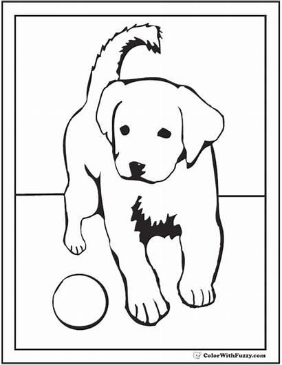 Coloring Puppy Labrador Dog Retriever Golden Printable