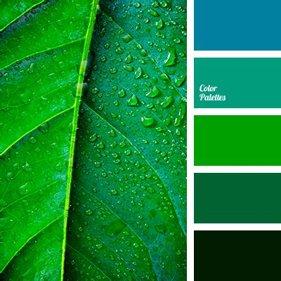 Palette Fresh Emerald Green by Apple Green Color Palette Ideas