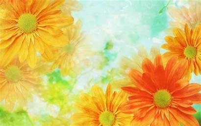Yellow Flowers Flower Desktop Awesome Wallpaperlepi Wallpapersafari