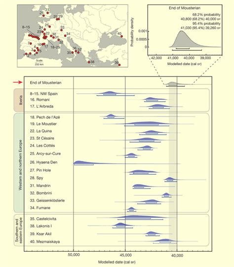 neanderthals coexisted with humans for more than 5 000 years anthropology sci news